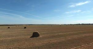 Haystacks in the fields stock footage