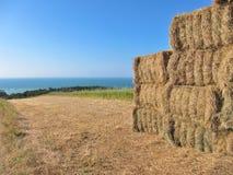 Haystacks in fields Royalty Free Stock Photos