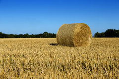Haystacks in the fields. Country Stock Photos
