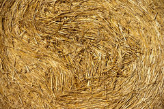 Haystacks in the fields Royalty Free Stock Photos