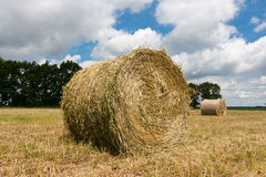 Haystacks on the filed Royalty Free Stock Image