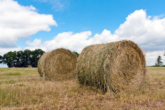 Haystacks on filed Royalty Free Stock Image