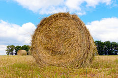 Haystacks on the filed in cloudy day Royalty Free Stock Photo