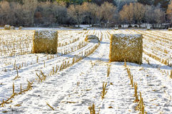 Haystacks on the Frozen Field. In Rural Minnesota stock images