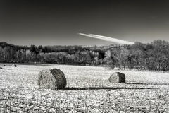 Haystacks on the Frozen Field in Black and White Royalty Free Stock Photography