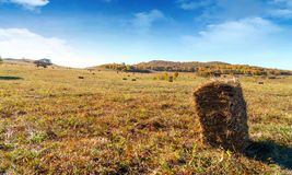 Haystacks on the grasslands of Inner Mongolia royalty free stock photos