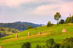 Haystacks on grassy slopes in rural area. Lovely agricultural scenery in summertime Royalty Free Stock Photos