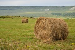 Haystacks. On the green field on the foothills of the mount Elbrus royalty free stock photos