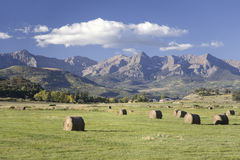 Haystacks and green grass in front of San Juan Mountains Stock Image