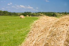 Haystacks harvest against the skies Royalty Free Stock Photography