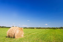 Haystacks harvest against the skies Royalty Free Stock Photo