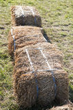 Haystacks royalty free stock photos