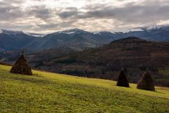 Haystacks on the hill. Gloomy late autumn landscape with overcast sky. snow on tops of distant mountain ridge Royalty Free Stock Photos