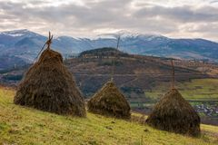 Haystacks on the hill. Gloomy late autumn landscape with overcast sky. snow on tops of distant mountain ridge. village down in the valley Royalty Free Stock Images