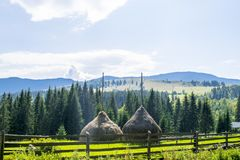 Haystacks on the hill. With a panoramic view of the Carpathians in Western Ukraine village stock photography