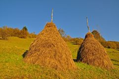 Haystacks on a hillside. Royalty Free Stock Photos