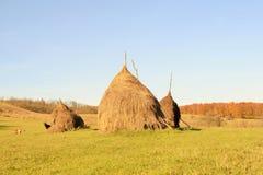 Haystacks. On the hillside in an autumn day Stock Photos