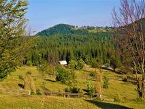 Haystacks in the historical Transylvania area royalty free stock photo