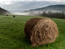 Haystacks on meadow. Photography hay bale in the morning in the meadow royalty free stock image