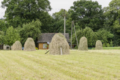 Haystacks on a meadow. Haystacks and Cottage in the countryside on a meadow in Small village Roznow in Malopolska, Poland stock photo