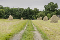 Haystacks on a meadow. Haystacks and dirt road on a meadow in Small village Roznow in Malopolska, Poland stock images