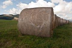 Haystacks on meadow near Malatina village in Slovakia Stock Photography