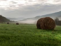 Haystacks on meadow. Photography hay bale in the morning in the meadow royalty free stock photography
