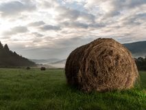 Haystacks on meadow. Photography hay bale in the morning in the meadow Stock Images