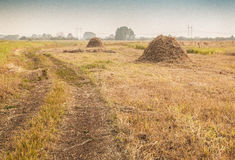 Haystacks on the meadow Royalty Free Stock Photos