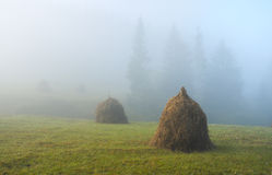 Haystacks, misty morning Royalty Free Stock Photography