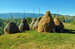 Haystacks at mountain Royalty Free Stock Images