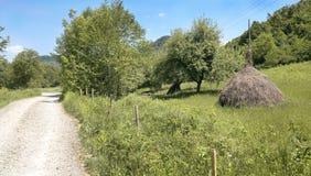 Haystacks. Haystacks, mountain rural scene in Romania, Europe Royalty Free Stock Photos