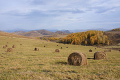 Haystacks in the mountains autumn. Outdoor Royalty Free Stock Images