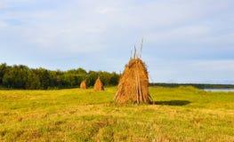 Haystacks. Royalty Free Stock Photos