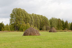 Haystacks na łące Obraz Royalty Free