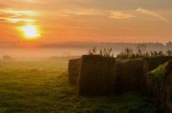 Haystacks na polu w wczesnym poranku Zdjęcia Stock