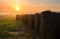 Haystacks na polu w wczesnym poranku Fotografia Royalty Free