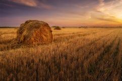 haystacks Por do sol no campo fotos de stock royalty free