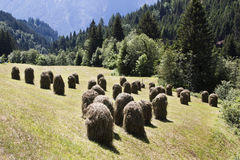 Haystacks in Pustertal, Tyrol, Austria Stock Images
