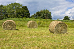 Haystacks Rolled Royalty Free Stock Photography