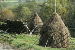 Haystacks. In the romanian countryside royalty free stock photography