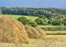 Haystacks. Rural view in Central Russia royalty free stock photos