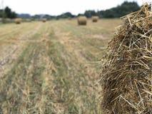 Haystacks on the slanted field royalty free stock photo