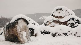 Haystacks in the snow at winter stock video footage