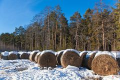 Haystacks and snow Royalty Free Stock Photos