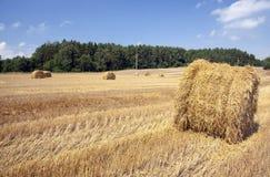 Haystacks straw , cereal Royalty Free Stock Photos