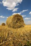 Haystacks straw, close up Stock Images
