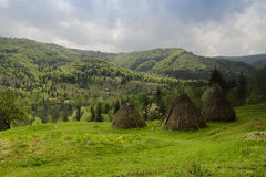 Haystacks of straw in the meadow, Ukraine Stock Photos