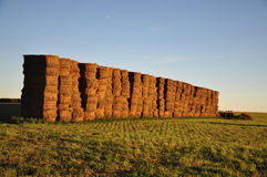 Haystacks at Sunset Royalty Free Stock Photo
