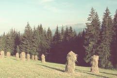 Haystacks in Tatra Mountains Stock Photos